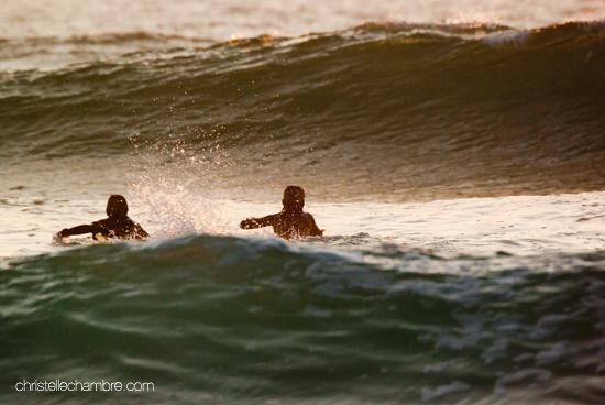 reprise surf